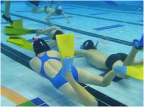 Underwater Hockey Success 2012