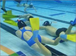 Underwater Hockey Success | Wellington High School