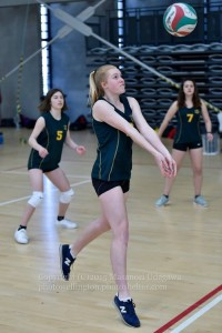 junior volleyball tournament 2015